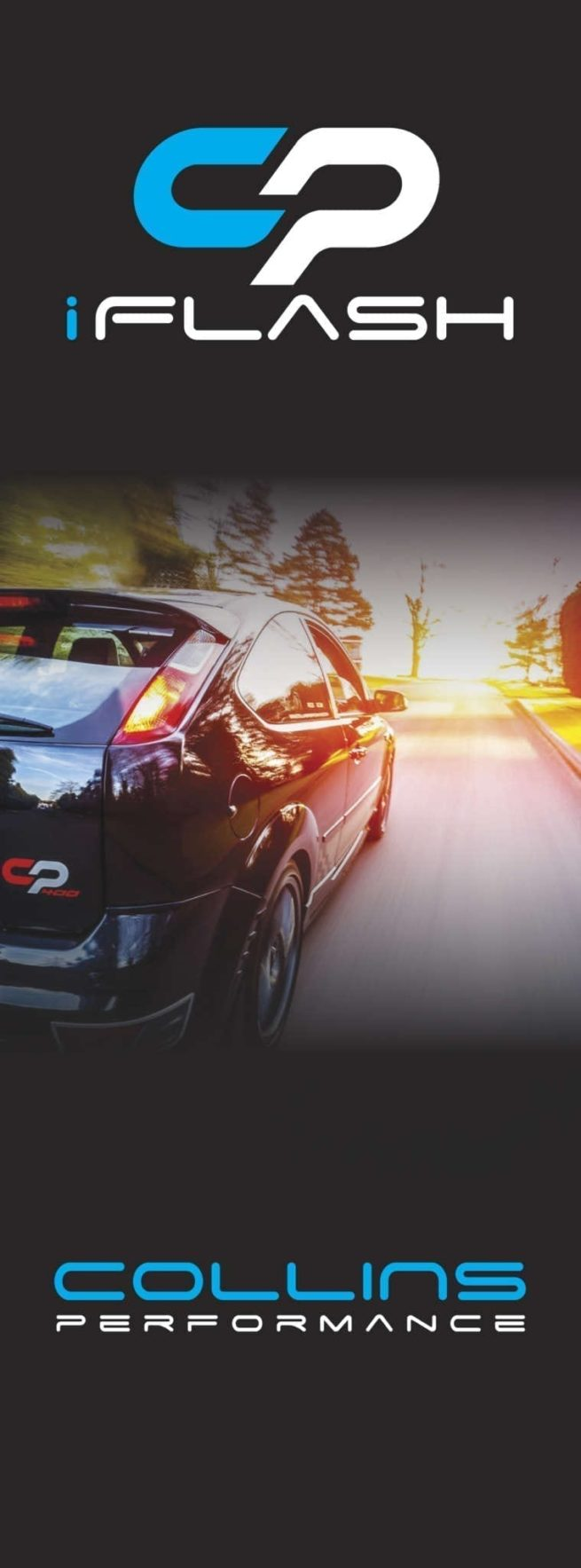 CP I-Flash - Fiesta ST180 (Stage 4 only)